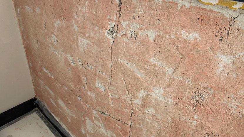 renovatie stucwerk prins mauritslaan