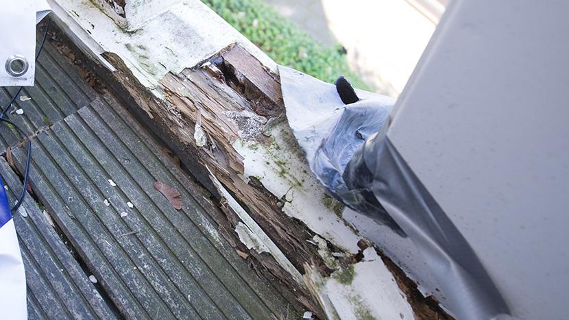 restauratie balkon door houtrot prinsevinkenpark 29