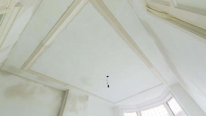 lijstwerk aan plafond merkusstraat bezuidenhout